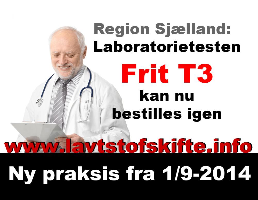 T3-i-region-sjælland_web